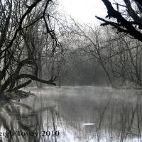 riverside-silhouette