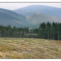 scotland_2