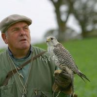 falcon_day_-_2005_15