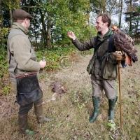 toasting_ferru-tail_hawks_first_hare